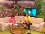 Tallinna TV kutsus külla