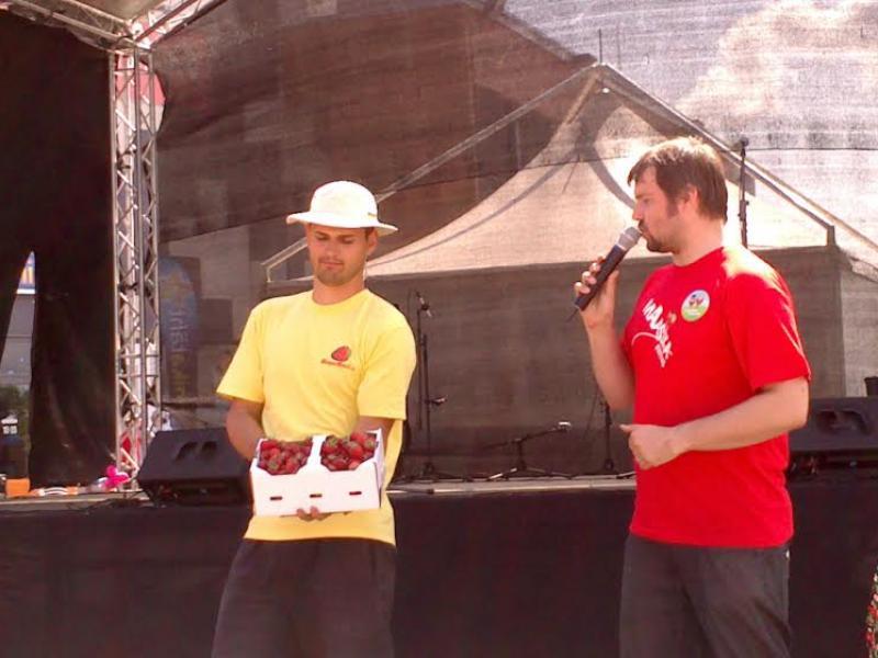 Maasikafestival 2013